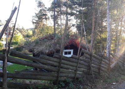 Norveška čupava kućica